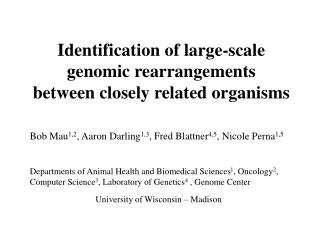 Identification of large-scale genomic rearrangements  between closely related organisms