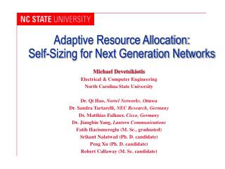 Adaptive Resource Allocation:  Self-Sizing for Next Generation Networks