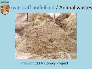 Gwastraff anifeiliaid /  Animal wastes