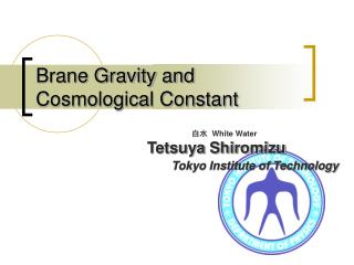 Brane Gravity and Cosmological Constant