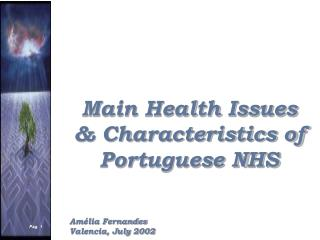 Main Health Issues & Characteristics of Portuguese NHS Amélia Fernandes Valencia, July 2002