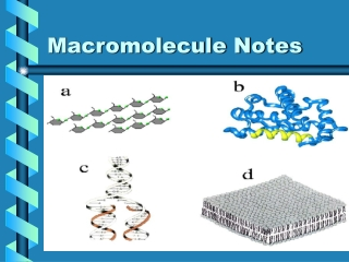 Molecules of Life