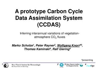 A prototype Carbon Cycle Data Assimilation System (CCDAS)