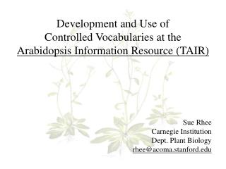 Development and Use of  Controlled Vocabularies at the  Arabidopsis Information Resource (TAIR)