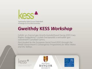 Gweithdy KESS  Workshop