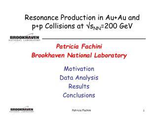 Patricia Fachini Brookhaven National Laboratory