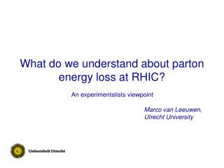 What do we understand about parton energy loss at RHIC?