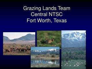 Grazing Lands Team Central NTSC Fort Worth, Texas
