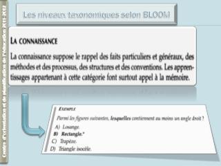 Les niveaux taxonomiques selon BLOOM