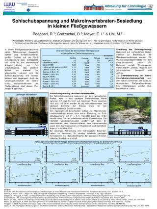 Sohlschubspannung und Makroinvertebraten-Besiedlung  in kleinen Fließgewässern