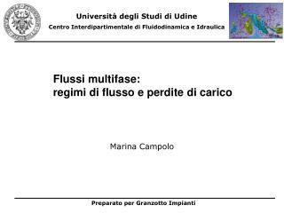 Flussi multifase:  regimi di flusso e perdite di carico