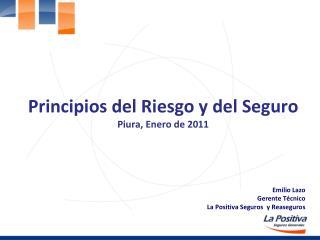 Principios del Riesgo y del Seguro Piura, Enero de 2011