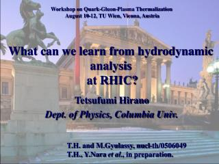 What can we learn from hydrodynamic analysis  at RHIC?