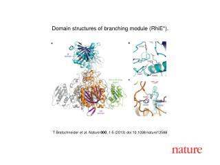 T Bretschneider  et al.  Nature  000 ,  1 - 5  (2013) doi:10.1038/nature 12588