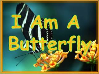 I Am A  Butterfly