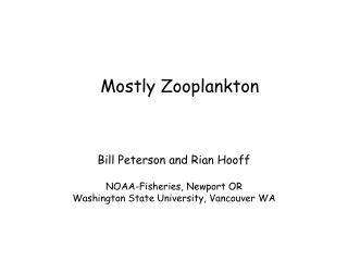 Mostly Zooplankton