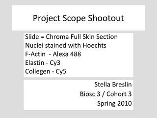 Project Scope Shootout