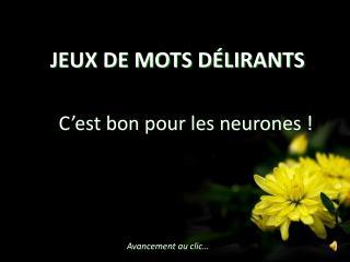 JEUX DE MOTS DÉLIRANTS