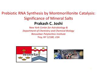 """RNA World Hypothesis"""