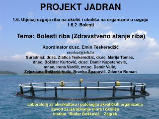 PROJEKT JADRAN 1.6.  Utjecaj uzgoja riba na okoliš i okoliša na organizme u uzgoju 1.6.2. Bolesti