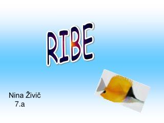 Nina Živič    7.a