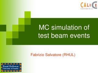 MC simulation of test beam events