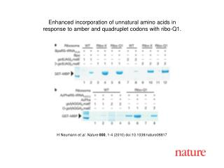 H Neumann  et al. Nature 000 ,  1 - 4  (2010) doi:10.1038/nature08 817