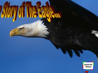 The Story of The Eagle