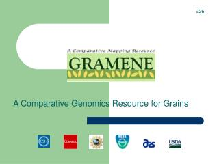 A Comparative Genomics Resource for Grains