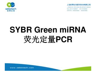 SYBR Green miRNA ???? PCR