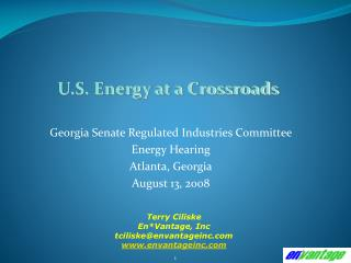 Georgia Senate Regulated Industries Committee  Energy Hearing Atlanta, Georgia August 13, 2008