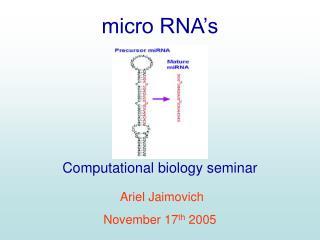 micro RNA's