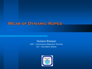 Wear of Dynamic Ropes