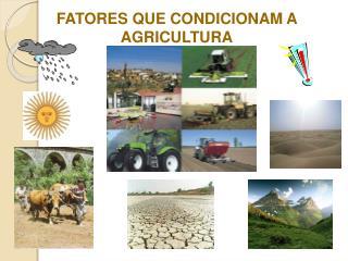 FATORES QUE CONDICIONAM A AGRICULTURA