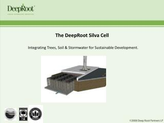 The DeepRoot Silva Cell  Integrating Trees, Soil  Stormwater for Sustainable Development.