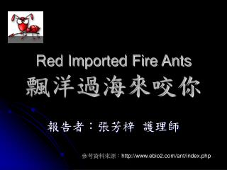 Red Imported Fire Ants 飄洋過海來咬你