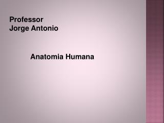 Professor  Jorge Antonio