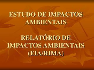 ESTUDO DE IMPACTOS AMBIENTAIS RELATÓRIO DE IMPACTOS AMBIENTAIS (EIA/RIMA)