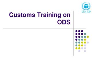 Customs Training on ODS
