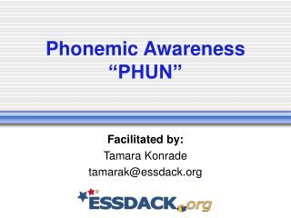 "Phonemic Awareness ""PHUN"""