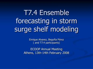 T7.4 Ensemble forecasting in storm surge shelf modeling