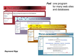 Fed  : one program          for many web sites          and databases