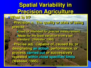 Spatial Variability in Precision Agriculture