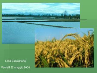 Lella Bassignana  Vercelli 22 maggio 2008