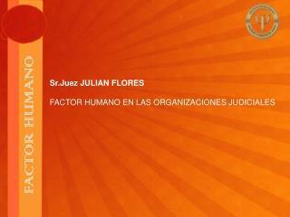 Sr.Juez JULIAN FLORES FACTOR HUMANO EN LAS ORGANIZACIONES JUDICIALES