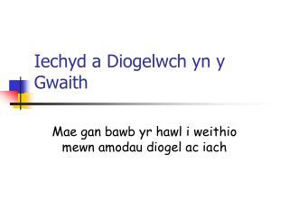 Iechyd a Diogelwch yn y Gwaith