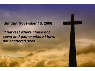 Sunday, November 16, 2008