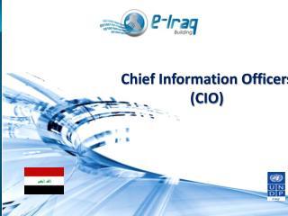 Chief Information Officers  (CIO)