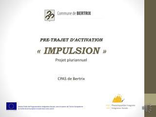 PRE-TRAJET D'ACTIVATION «IMPULSION» Projet  pluriannuel CPAS de Bertrix