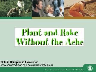 Ontario Chiropractic Association chiropractic.on    oca@chiropractic.on